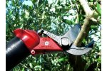 Lisam - Model SLY - Orchards - Pneumatic Shears