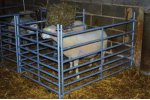 Model PG102 01 01 - Sheep Hurdles