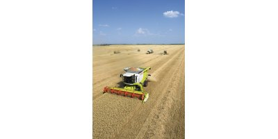 LEXION  - Model 670-620 - Combine Harvester