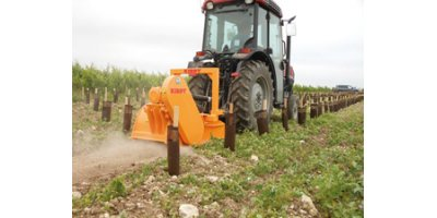 Model BP-BPE - Vineyard Stone Crushers