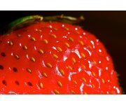 Healthier processed food? Essence of strawberry could be the key