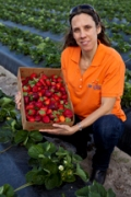 Strawberry monitoring system could add $1.7 million over 10 years to some farms