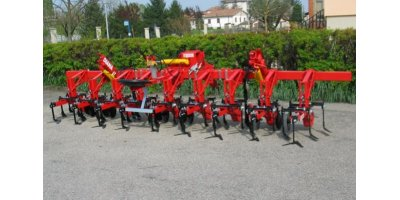 Model SHn/SXn/ Diana - Biological Inter-Row Cultivators with with Tines and Discs