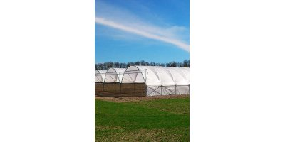 Classic Clear - Polythene Tunnel Covers