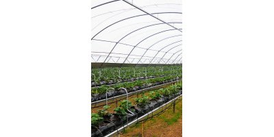 Haygrove - Single Row Substrate System