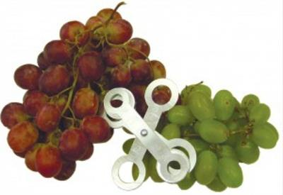 Turoni - Model 53315 - Table Grape and Small Fruit Sizer