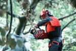 Model CS 2139 T - Chainsaws