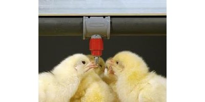 RELIA-FLOW - Nipple Drinkers for Broilers
