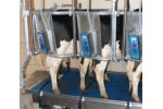 BouMatic - Model GT2 - Parabone Milking System