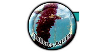 Talleres Aguin, S.L.