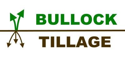 Bullock Tillage