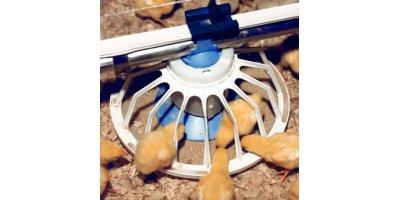 Cablevey - Broilers