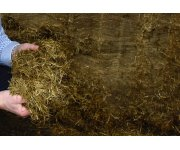 Five key lessons from your open grass silage clamp