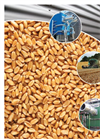 Chief - Model CD - Continuous Mixed Flow Grain Dryer Brochure