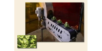 Agra-Best - Broccoli Online Floret Unit