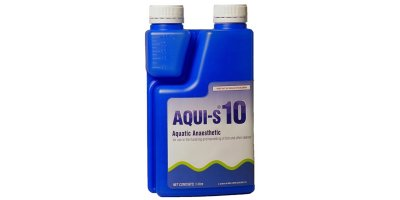Aquis - Water Dispersible Liquid Sedative for Finfish