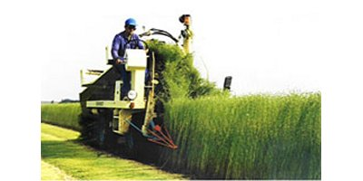 Dehondt - Flax Pulling Machine