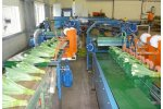 TulipStar Pro - Sorting Machine
