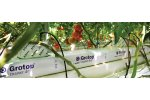 Grotop Master Dry - Products for Vegetable Growers