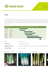 Tozer Seeds - Leek - Factsheet