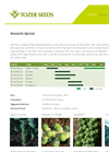 Tozer Seeds - Brussels Sprouts - Brochure