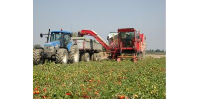 Model Super COSMO/35/DS - Tomato Harvest Machine