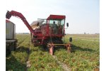 Model GIGA COSMO/45/DS - Tomato Harvest Machine