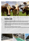 Cattle Feeders Feeding Lane- Brochure