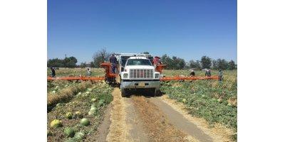 Melon Wrangler Harvesters
