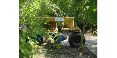 Jatropha Selective Harvester