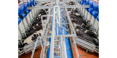 Herringbone - Model HB50 - Milking Parlours