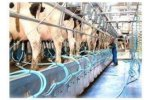 Fullwood  - Model 50° - Herringbone Milking Parlours