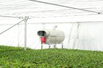 Ulma - Greenhouse Hot Air Generators