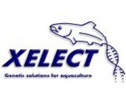 Xelect awarded Smart: Scotland Funding