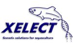 Xelect Ltd.