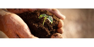Microbial formulations for agriculture sector - Agriculture