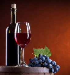 Solutions for the winemaking industry - Manufacturing, Other