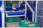 Depalletizers - Model UNI_DEP 200. - Fruit & Vegetable Processing Plants
