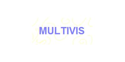 Multivis Waterbehandeling B.V.