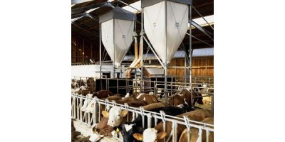 Feed Silos for Farm Animals