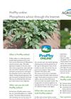 Prophy Online pdf