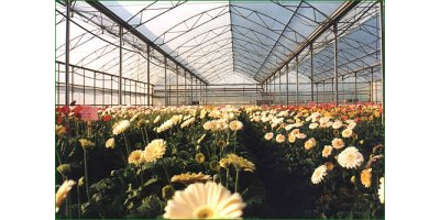RUBY Greenhouses