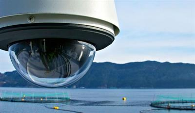 Steinsvik - Model Orbit 310B & 351 - Aquaculture Site Surveillance Camera