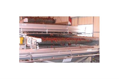 Etgar - Sorting and Cleaning System