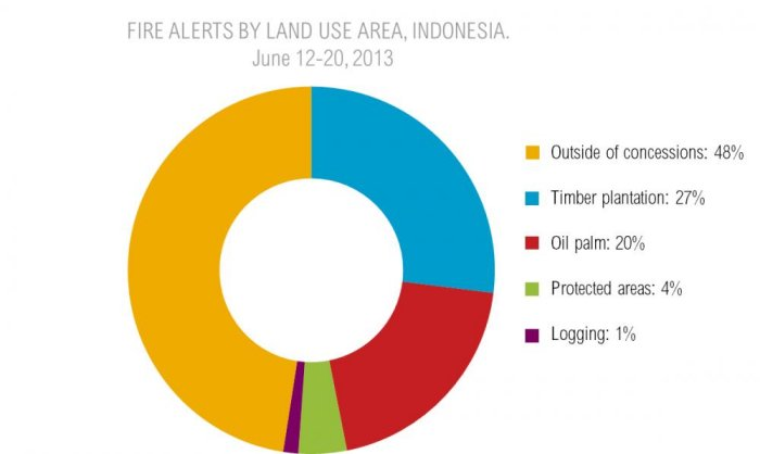 Peering through the haze: What data can tell us about the fires in Indonesia