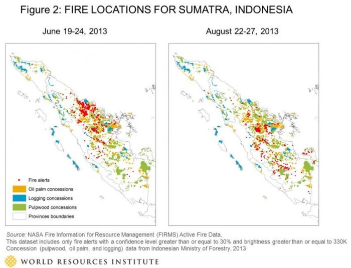 Indonesia Burning: Forest fires flare to alarming levels