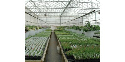 Widespan Greenhouses