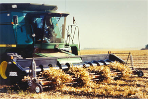 Bean Harvesting System