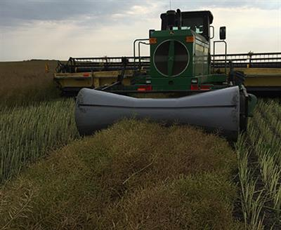 Direct Mount Swath Roller