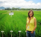 Former IRRI scientist appointed as acting CEO of major cereal crop genomics facility in Australia
